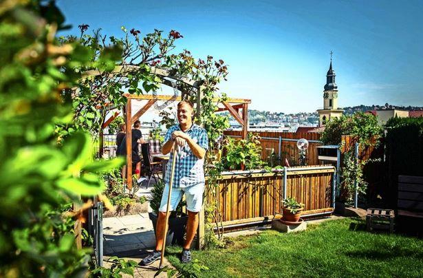 Kleingarten Vorschriften